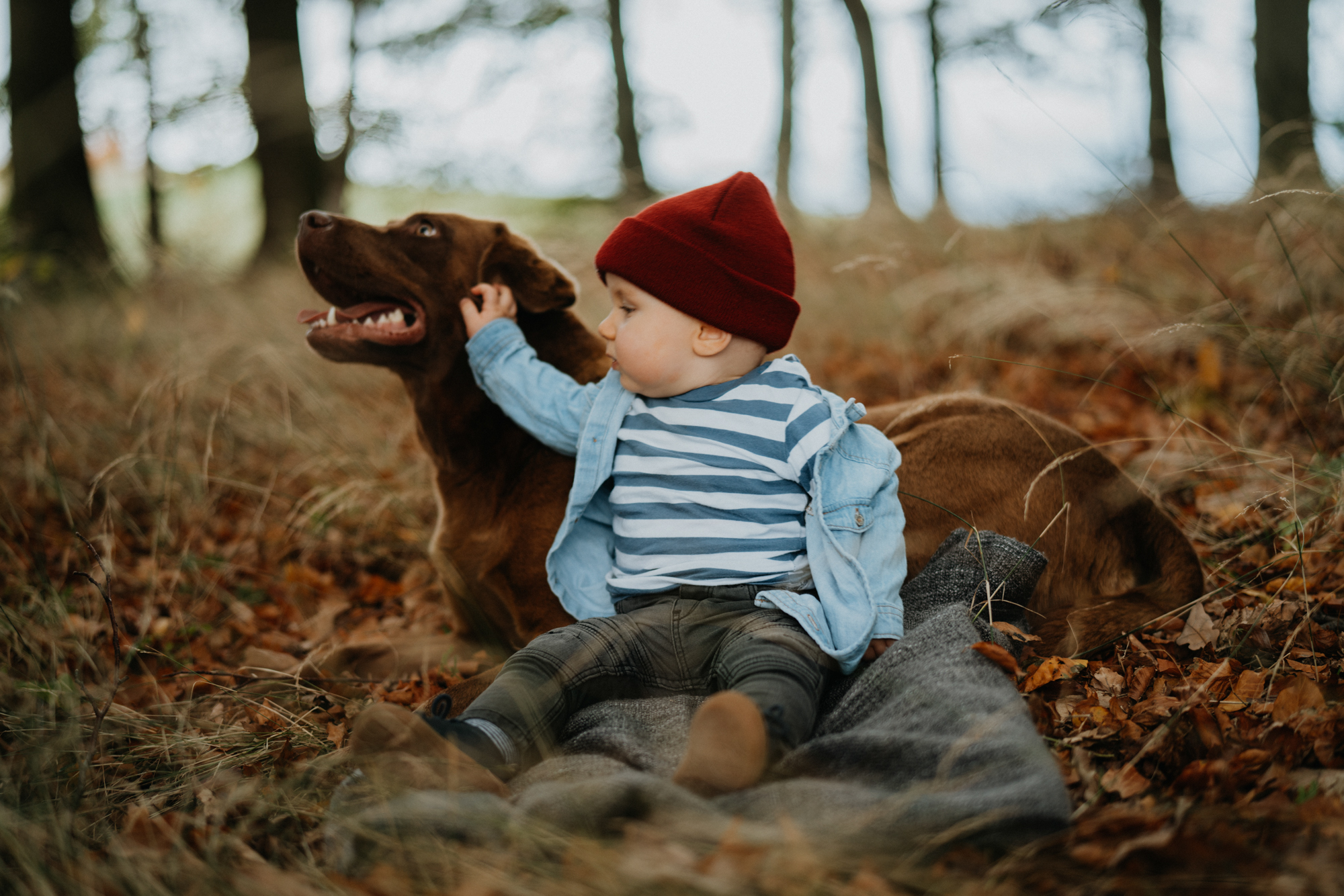 Svenja Eder Photography